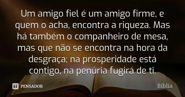 Um amigo fiel é um amigo firme, e quem o acha, encontra a riqueza. Mas há também o companheiro de mesa, mas que não se encontra na hora da desgraça; na prosperi... Frase de Bíblia.