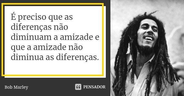 É preciso que as diferenças não diminuam a amizade e que a amizade não diminua as diferenças.... Frase de Bob Marley.
