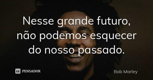 Nesse grande futuro, não podemos esquecer do nosso passado.... Frase de Bob Marley.