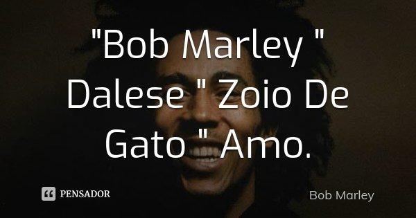 """""""Bob Marley """" Dalese """" Zoio De Gato """" Amo.... Frase de Bob Marley."""