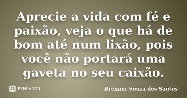 Aprecie a vida com fé e paixão, veja o que há de bom até num lixão, pois você não portará uma gaveta no seu caixão.... Frase de Brenner Souza dos Santos.