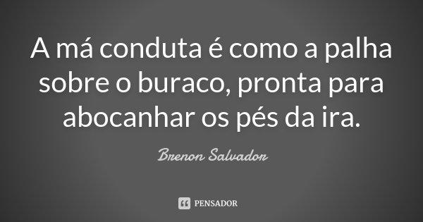 A má conduta é como a palha sobre o buraco, pronta para abocanhar os pés da ira.... Frase de Brenon Salvador.
