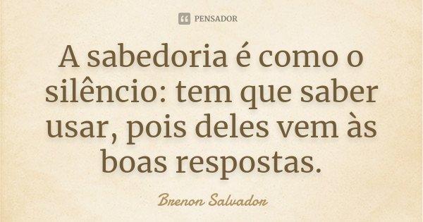 A sabedoria é como o silêncio: tem que saber usar, pois deles vem às boas respostas.... Frase de Brenon Salvador.