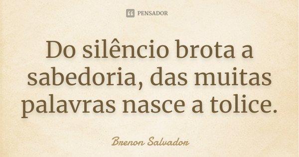 Do silêncio brota a sabedoria, das muitas palavras nasce a tolice.... Frase de Brenon Salvador.