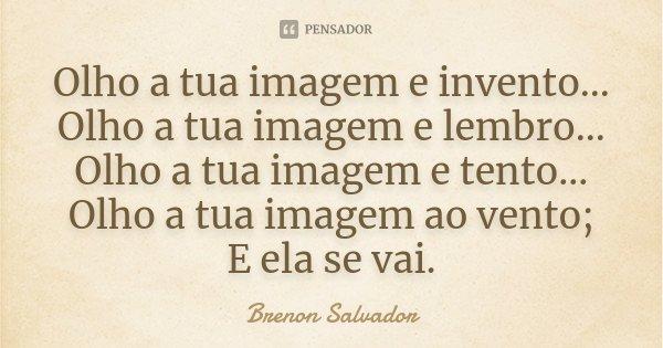 Olho a tua imagem e invento... Olho a tua imagem e lembro... Olho a tua imagem e tento... Olho a tua imagem ao vento; E ela se vai.... Frase de Brenon Salvador.