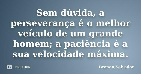Sem dúvida, a perseverança é o melhor veículo de um grande homem; a paciência é a sua velocidade máxima.... Frase de Brenon Salvador.