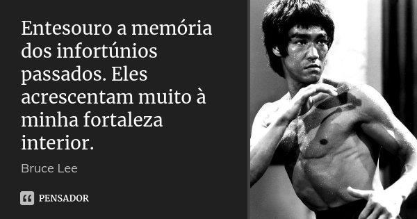 Entesouro a memória dos infortúnios passados. Eles acrescentam muito à minha fortaleza interior.... Frase de Bruce Lee.