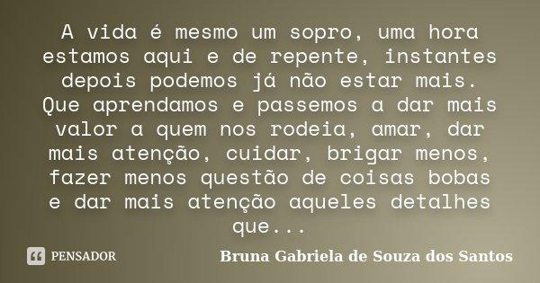 A Vida é Mesmo Um Sopro Uma Hora Bruna Gabriela De Souza Dos