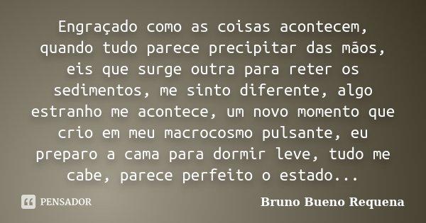 Engraçado como as coisas acontecem, quando tudo parece precipitar das mãos, eis que surge outra para reter os sedimentos, me sinto diferente, algo estranho me a... Frase de Bruno Bueno Requena.