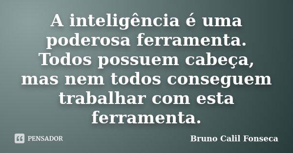 A inteligência é uma poderosa ferramenta. Todos possuem cabeça, mas nem todos conseguem trabalhar com esta ferramenta.... Frase de Bruno Calil Fonseca.