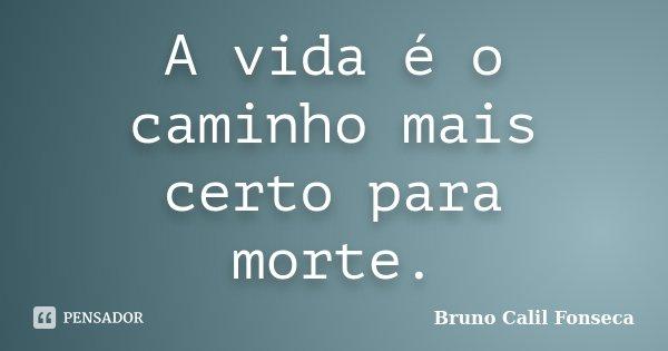 A vida é o caminho mais certo para morte.... Frase de Bruno Calil Fonseca.