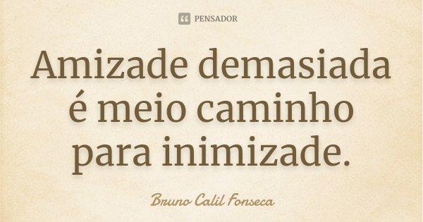 Amizade demasiada é meio caminho para inimizade.... Frase de Bruno Calil Fonseca.