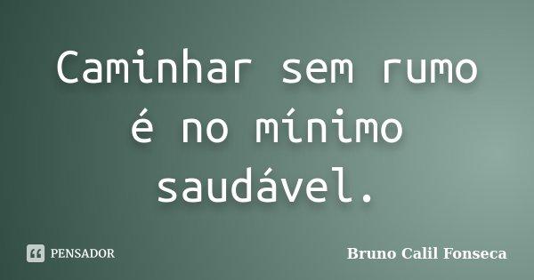 Caminhar sem rumo é no mínimo saudável.... Frase de Bruno Calil Fonseca.