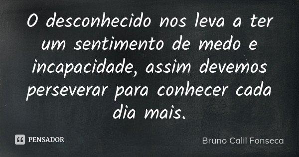 O desconhecido nos leva a ter um sentimento de medo e incapacidade, assim devemos perseverar para conhecer cada dia mais.... Frase de Bruno Calil Fonseca.
