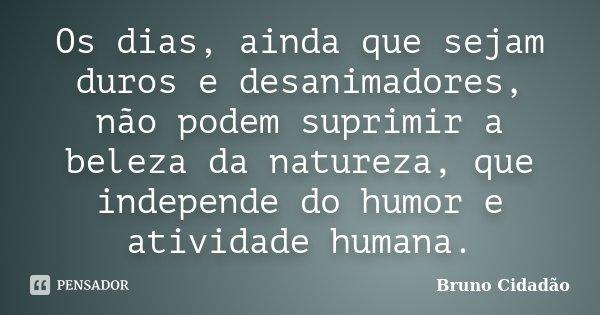 Os dias, ainda que sejam duros e desanimadores, não podem suprimir a beleza da natureza, que independe do humor e atividade humana.... Frase de Bruno Cidadão.