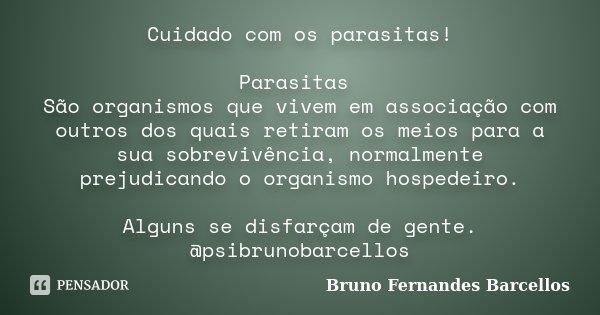 Cuidado Com Os Parasitas Parasitas São Bruno Fernandes Barcellos