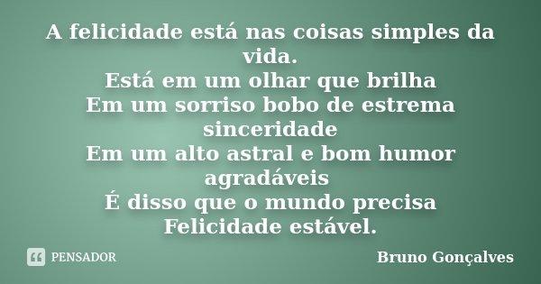 A Felicidade Está Nas Coisas Simples Da Bruno Gonçalves