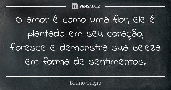 O amor é como uma flor, ele é plantado em seu coração, floresce e demonstra sua beleza em forma de sentimentos.... Frase de Bruno Grigio.