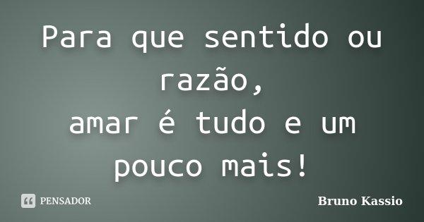 Para que sentido ou razão, amar é tudo e um pouco mais!... Frase de Bruno Kassio.