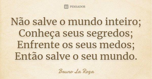 Não salve o mundo inteiro; Conheça seus segredos; Enfrente os seus medos; Então salve o seu mundo.... Frase de Bruno La Roza.