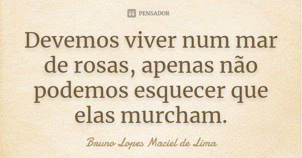 Devemos viver num mar de rosas, apenas não podemos esquecer que elas murcham.... Frase de Bruno Lopes Maciel de lima.