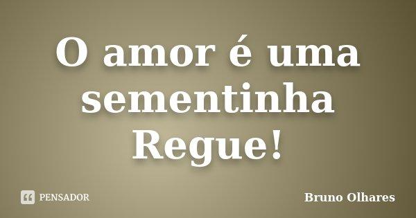 O amor é uma sementinha Regue!... Frase de Bruno Olhares.