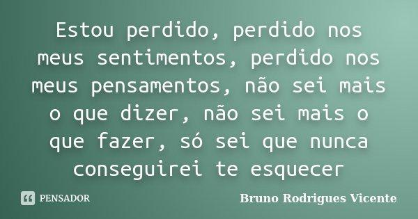 Estou perdido, perdido nos meus sentimentos, perdido nos meus pensamentos, não sei mais o que dizer, não sei mais o que fazer, só sei que nunca conseguirei te e... Frase de Bruno Rodrigues Vicente.