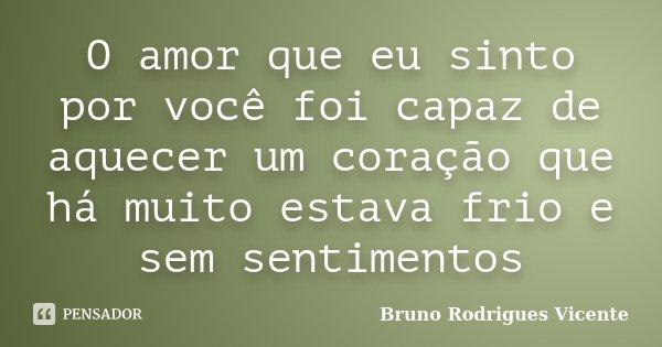 O amor que eu sinto por você foi capaz de aquecer um coração que há muito estava frio e sem sentimentos... Frase de Bruno Rodrigues Vicente.