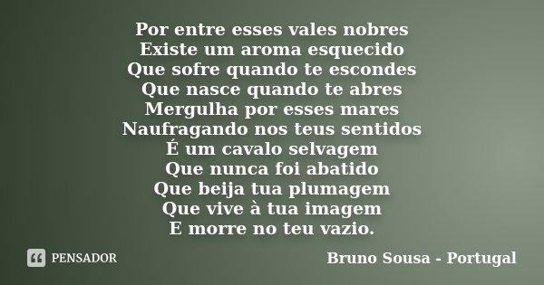 Por entre esses vales nobres Existe um aroma esquecido Que sofre quando te escondes Que nasce quando te abres Mergulha por esses mares Naufragando nos teus sent... Frase de Bruno Sousa - Portugal.
