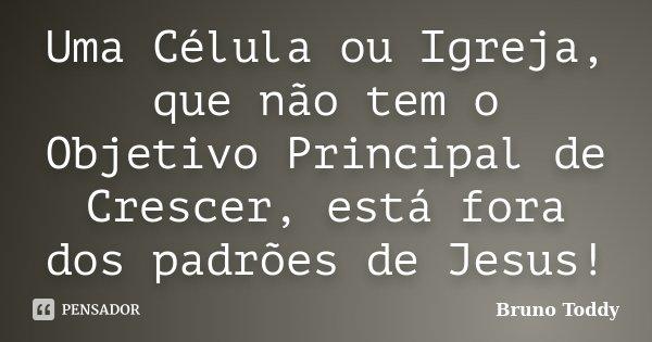 Uma Célula ou Igreja, que não tem o Objetivo Principal de Crescer, está fora dos padrões de Jesus!... Frase de Bruno Toddy.