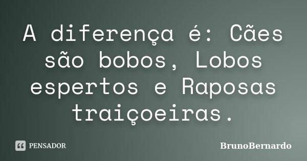 A diferença é: Cães são bobos, Lobos espertos e Raposas traiçoeiras.... Frase de BrunoBernardo.