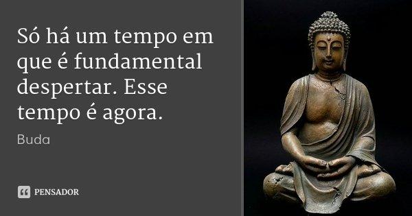 Só há um tempo em que é fundamental despertar. Esse tempo é agora.... Frase de Buda.
