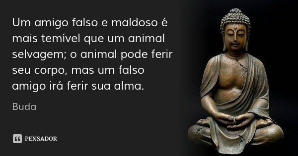Um amigo falso e maldoso é mais temível que um animal selvagem; o animal pode ferir seu corpo, mas um falso amigo irá ferir sua alma.... Frase de Buda.
