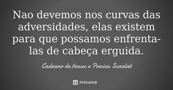 Nao devemos nos curvas das adversidades, elas existem para que possamos enfrenta-las de cabeça erguida.... Frase de Caderno de Frases e Poesias Scarlat.