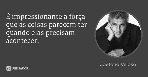 É impressionante a força que as coisas parecem ter quando elas precisam acontecer.... Frase de Caetano Veloso.