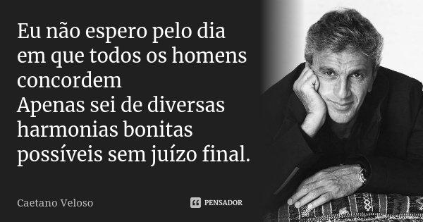 Eu não espero pelo dia em que todos os homens concordem Apenas sei de diversas harmonias bonitas possíveis sem juízo final.... Frase de Caetano Veloso.