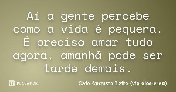 Aí a gente percebe como a vida é pequena. É preciso amar tudo agora, amanhã pode ser tarde demais.... Frase de Caio Augusto Leite (via eles-e-eu).