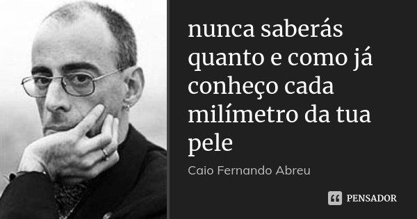 nunca saberás quanto e como já conheço cada milímetro da tua pele... Frase de Caio Fernando Abreu.