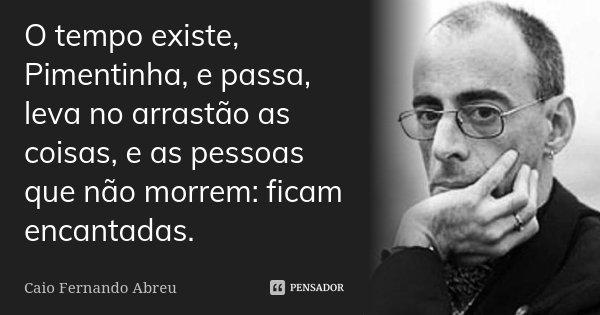 O tempo existe, Pimentinha, e passa, leva no arrastão as coisas, e as pessoas que não morrem: ficam encantadas.... Frase de Caio Fernando Abreu.