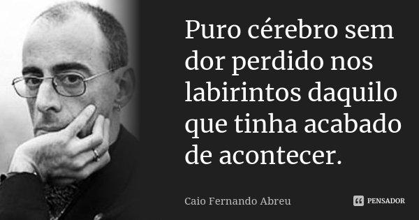 Puro cérebro sem dor perdido nos labirintos daquilo que tinha acabado de acontecer.... Frase de Caio Fernando Abreu.