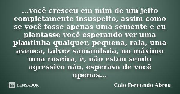 ...você cresceu em mim de um jeito completamente insuspeito, assim como se você fosse apenas uma semente e eu plantasse você esperando ver uma plantinha qualque... Frase de Caio Fernando Abreu.