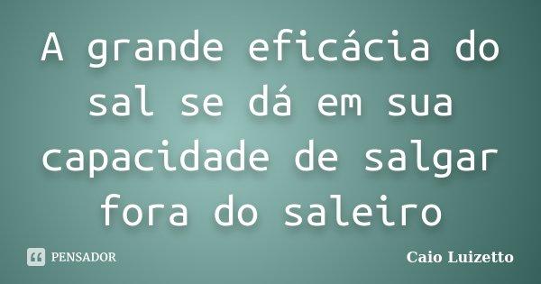 A grande eficácia do sal se dá em sua capacidade de salgar fora do saleiro... Frase de Caio Luizetto.