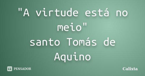"""""""A virtude está no meio"""" santo Tomás de Aquino... Frase de Calixta."""