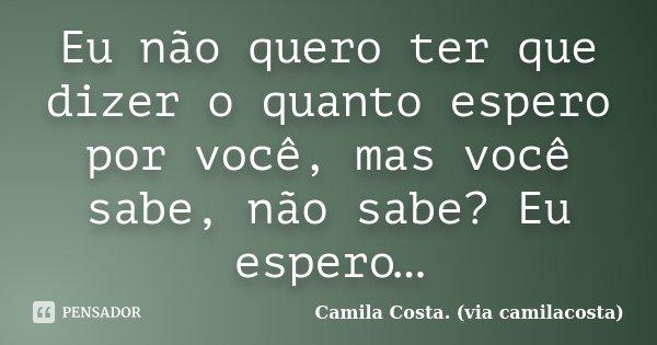 Eu não quero ter que dizer o quanto espero por você, mas você sabe, não sabe? Eu espero…... Frase de Camila Costa. (via camilacosta).