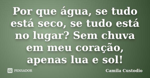 Por que água, se tudo está seco, se tudo está no lugar? Sem chuva em meu coração, apenas lua e sol!... Frase de Camila Custodio.