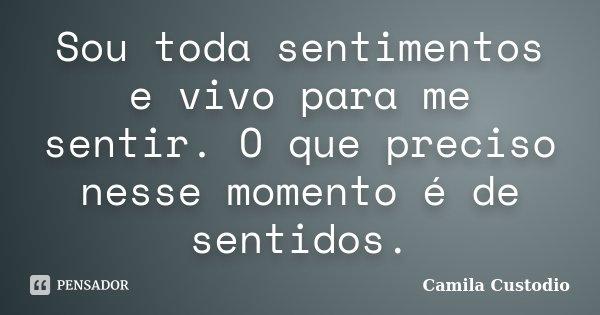 Sou toda sentimentos e vivo para me sentir. O que preciso nesse momento é de sentidos.... Frase de Camila Custodio.