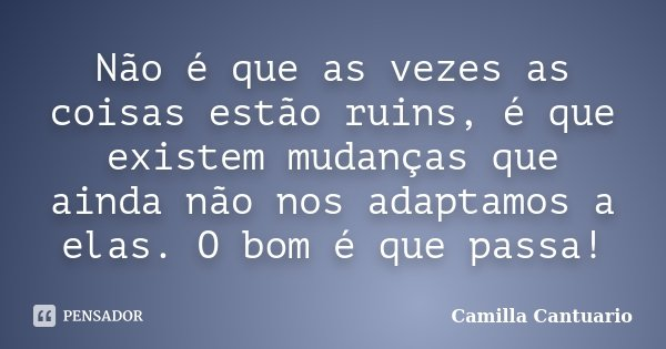Não é que as vezes as coisas estão ruins, é que existem mudanças que ainda não nos adaptamos a elas. O bom é que passa!... Frase de Camilla Cantuario.