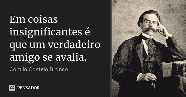 Em coisas insignificantes é que um verdadeiro amigo se avalia.... Frase de Camilo Castelo Branco.