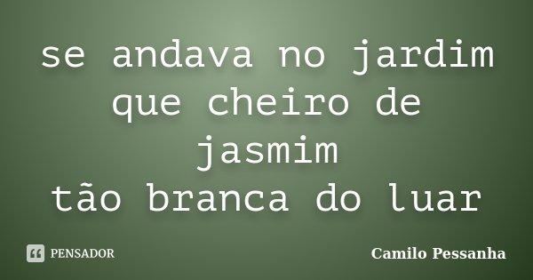 se andava no jardim que cheiro de jasmim tão branca do luar... Frase de Camilo Pessanha.