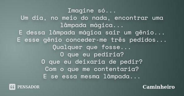 Imagine só... Um dia, no meio do nada, encontrar uma lâmpada mágica... E dessa lâmpada mágica sair um gênio... E esse gênio conceder-me três pedidos... Qualquer... Frase de Caminheiro.
